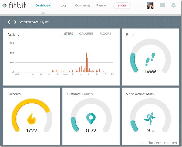 FitBit-2013-07-02