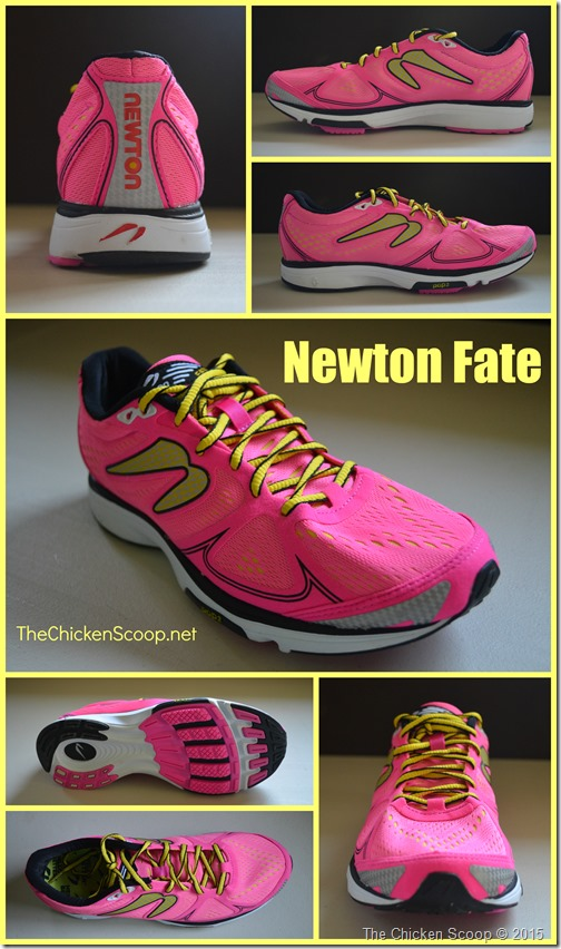 Review: Newton Fate Running Shoes