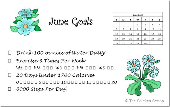 June 2016 Goals